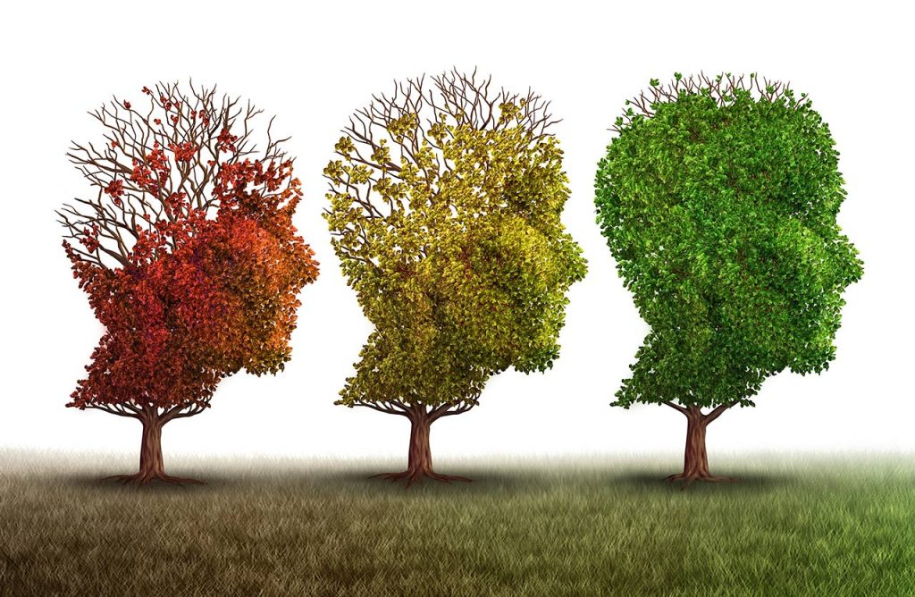 Hope for cognitive decline