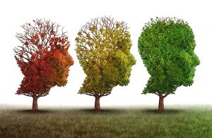 Hope for cognitive decline
